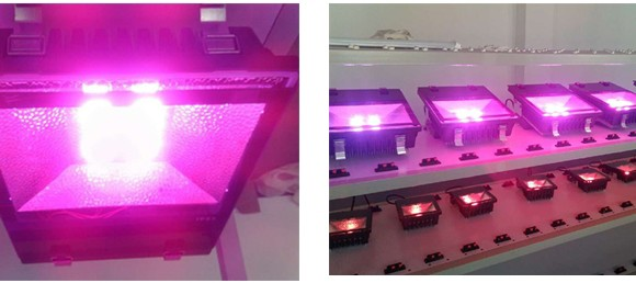LED-floodlight-Grow-Light